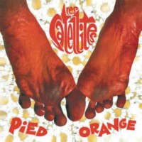 Satellites, Les - Pied Orange
