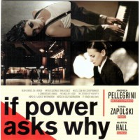 ANDREA PELLEGRINI - TANJA ZAPOLSKI - MARTIN HALL - If Power Asks Why