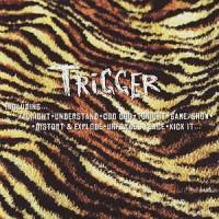 TRIGGER - Distort & Explode