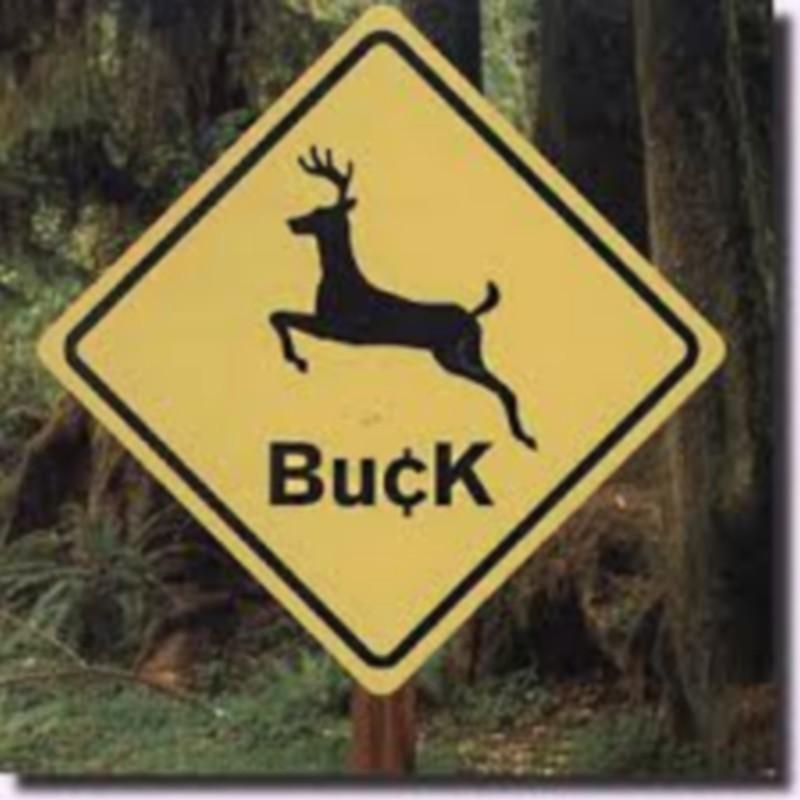 Buck - Buck