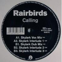 RAIRBIRDS - Calling Remixes