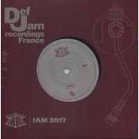 IAM - Iam 2017